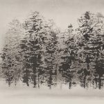 light-in-the-trees-ink-on-rice-paper-13-x-34-75-2000